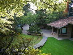 Bonsai, Patio, Outdoor Decor, Home Decor, Decoration Home, Terrace, Room Decor, Bonsai Trees, Porch