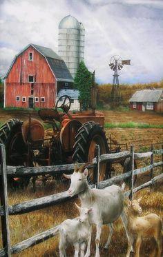 typical US farm picture #goatvet