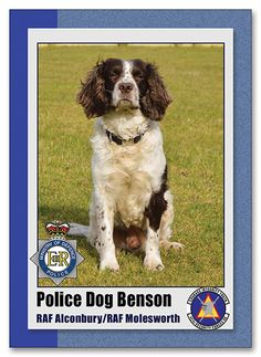 Benson Police Dog must be undercover... www.customsportscards.com