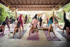 Tantra Vinyasa Yoga Teacher Training in Koh Samui, Thailand.
