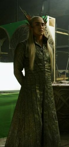Thranduil, wish this pic was a little brighter.  Would be great of the costume.