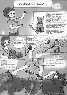 ▷ Cómo es la peluquería felina o bañar un gato ✔️ Peanuts Comics, Movies, Movie Posters, Art, Gatos, Ferrets, Dogs, Art Background, Film Poster