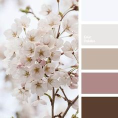 delicate palette for wedding palettes with color ideas for decoration your house, wedding, hair or even nails. Colour Pallette, Color Combos, Brown Colour Palette, Palette Pastel, Decoration Palette, Room Color Schemes, Bathroom Colors, Bathroom Designs, Colorful Interiors