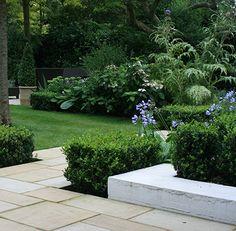 Tranquil town garden