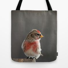 Common Redpoll Tote Bag by Vanilla Extinction - $22.00