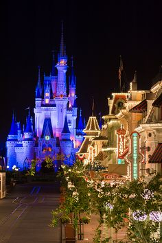 Magic Kingdom - Main Street and Cinderella's castle