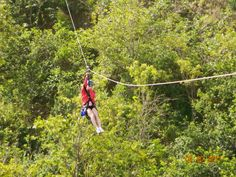 zipling in maui! go to the zip line on my honeymoon in hawaii!!!