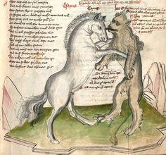 Speculum humanae salvationis. Memento mori-Texte [u.a.] Bayern - Österreich, I: zwischen ca. 1440 - 1466, II: um Mitte 15. Jh., III: 2. Viertel 15. Jh. Cgm 3974  Folio 172