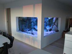 awesome aquarium :)
