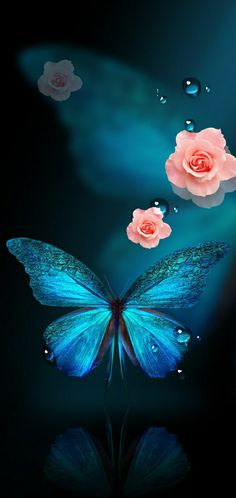 Flowery Wallpaper, Butterfly Wallpaper Iphone, Iphone Wallpaper Quotes Love, Cute Wallpaper For Phone, Rose Wallpaper, Cool Wallpapers For Phones, Pretty Wallpapers, Cute Background Pictures, Butterfly Background