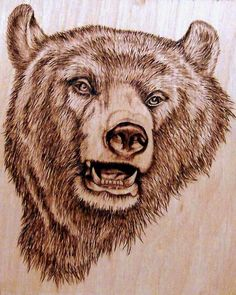 beautiful pyrography bear