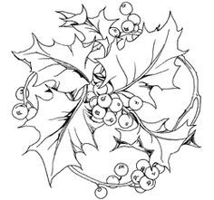 holly and ivy coloring pages | ivy leaf template | Ivy Outline Clip Art Vector Online ...