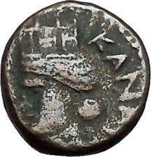 DOMITIAN 94AD Decapolis Canata Seleucia TYCHE RARE Ancient Roman Coin i56227 https://trustedmedievalcoins.wordpress.com/2016/06/28/domitian-94ad-decapolis-canata-seleucia-tyche-rare-ancient-roman-coin-i56227/