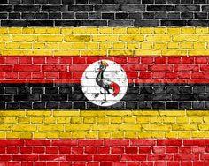 Uganda Flag, Html, School