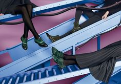 Collection Woman Fall Winter 2016 - Fratelli Rossetti