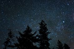 """I have loved the stars too fondly to be fearful of the night."" -- Galileo Galilei"