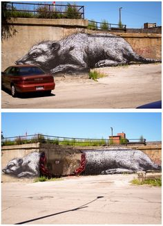 impressive street art by ROA