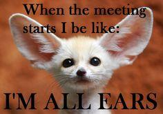 JW meme/humor from nomnom nom. Board: Humor, JW Style