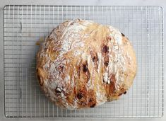 Cranberry-Walnut No-Knead Bread