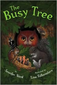 Picture book for habitats. We spend so much time teaching our young children about animals that don't live in our climate and often forget those that are around us.