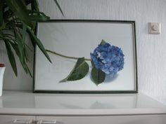 Hortensia - Olieverf