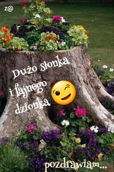Good Morning, Garden Sculpture, Projects To Try, Funny Quotes, Humor, Pictures, Photo Illustration, Buen Dia, Funny Phrases