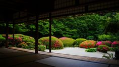 japanese garden / shisen-dō, kyoto 詩仙堂 京都