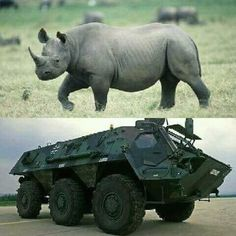 Defence Force, War Machine, South Africa, Brave, Elephant, African, Military, Apartheid, Soldiers