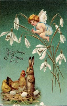 angelot, lapin, poule et poussin                                                                                                                                                                                 Plus