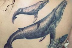 Tattoo Designs For Compass/Whale Tail Combo Tattoodocom