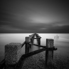 Old Guard by Vulture Labs Nature Photography, Fashion Photography, Vulture, Long Exposure, Photo Galleries, Black And White, Labs, Gallery, Pictures