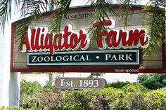 The St. Augustine Alligator Farm Zoological Park #FavoriteStAugustineImages