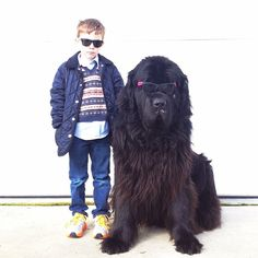 Interview with the Mother of the Little Boy and His Huge Dog - My Modern Metropolis