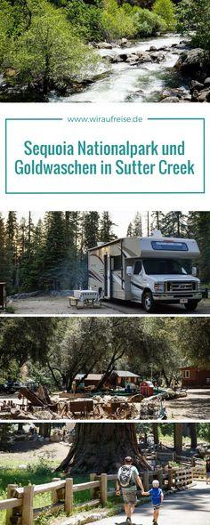 Rundreise durch Kalifornien mit Wohnmobil und Kind. Wandern im Sequoia Nationalpark und Goldwaschen in Sutter Creek. Mehr Informationen unter www.wiraufreise.de