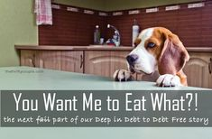 """""""You want me to eat what?!"""" The next part in The Thrifty Couple Deep in Debt to Debt-Free. Our story on how we got into and how we paid off $100K of consumer debt.  The good the bad and the ugly."""