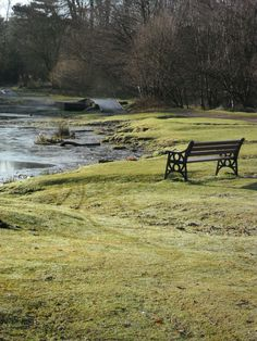 Frost at Little Bracebridge Pool, Sutton Park, Sutton Coldfield, England via Aldridge, in a Campervan.