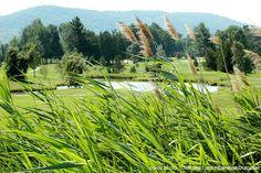 Bromont - Photos Photos, Mountains, Nature, Travel, Tourism, Naturaleza, Viajes, Trips, Nature Illustration