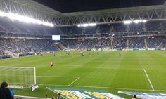 Espanyol Rayo 13 abril 2014
