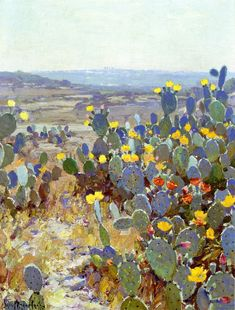 Cactus in Bloom , 1915 - Untitled (aka Landscape with Catci) - Robert Julian Onderdonk Impressionism Landscape Art, Landscape Paintings, Watercolor Paintings, Desert Landscape, Oil Paintings, Art And Illustration, Desert Art, Cactus Art, Cactus Decor
