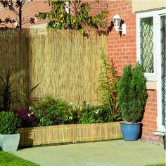 Wickes Reed Garden Screening 2mx4m (so 8m length for staircase) £25