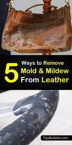 Find out how to remove mold from leather goods using proven stain removers like rubbing alcohol, baking soda, and vinegar! These cleaning tips will have your leather items looking good as new! Deep Cleaning Tips, House Cleaning Tips, Diy Cleaning Products, Cleaning Solutions, Spring Cleaning, Cleaning Hacks, Cleaning Recipes, Cleaning Supplies, All You Need Is