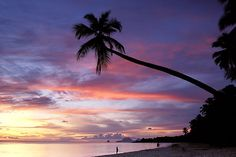 Colorful  Martinique, Anse des Salines, Beach at sunset