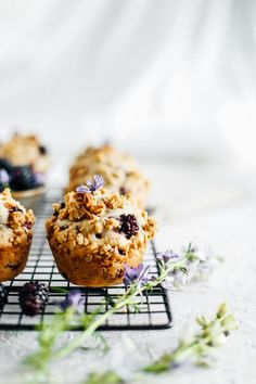 An easy recipe for blackberry rhubarb muffins. This muffin recipe is filled with tarty blackberries, rhubarb chunks and laced with cinnamon. On top is an oat crumble that makes for the most perfect salty-sweet bite! These muffins are great for brunches, E Oven Baked French Toast, Pecan Cinnamon Rolls, Streusel Muffins, Foto Pastel, Rhubarb Crumble, Blackberry Crumble, Blackberry Recipes, Nectarine Recipes, Rhubarb Recipes