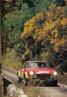 Classic Rally Car - Fiat 124