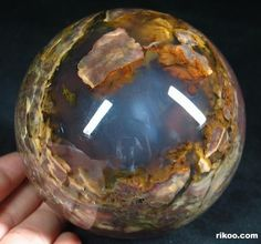 Dinosaur Egg Agate Crystal Ball Holy cow, that's breathtaking Crystal Sphere, Crystal Ball, Minerals And Gemstones, Rocks And Minerals, Dinosaur Eggs, Beautiful Rocks, Mineral Stone, Stones And Crystals, Gem Stones
