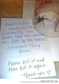 I would probably do this. After throwing things at it and screaming. // Gigantic evil spider…