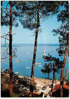Plein soleil sur le Cap Ferret des 60s