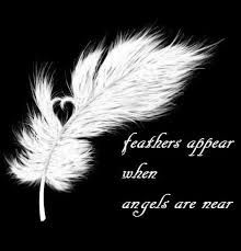 And a feather has appeared. November I am thankful for guardian angels and the loved ones they have protected. Have you ever had an angel experience? November Quotes, November 23, Jolie Phrase, I Believe In Angels, Ange Demon, Angels Among Us, Real Angels, Fallen Angels, Feather Tattoos