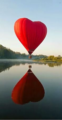 This is so Beautiful the way that it has a reflection in the water what a beautiful day for hot air balloon journey how fun I would like to do that sometime and see if I can break my phobia of heights I'm so scared of heights.