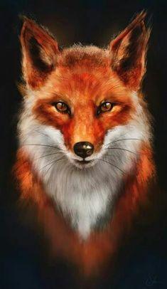 Ce renard a l'air terrifiant. Mais si nous le connaissons mieux, on  y voit un renard généreux.